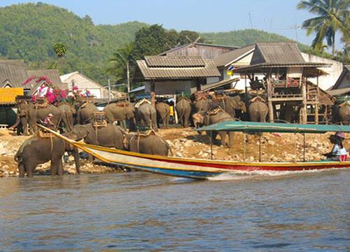 หมู่บ้านกะเหรี่ยงรวมมิตร บริการนั่งช้าง 1